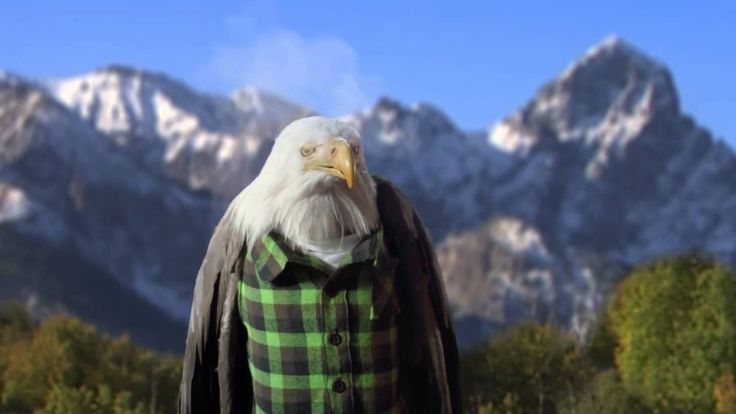Stephen Colbert Pistachios Commercial with High Eagle