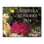 Undersea Wonders Calendar