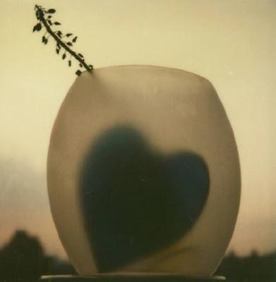 muse-ings: Andre Kertesz Polaroids