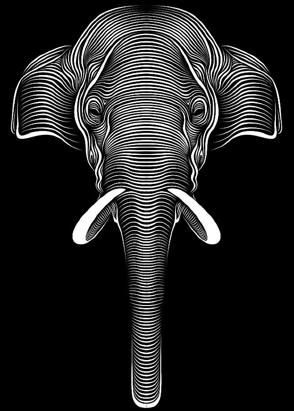 Contour Line Drawing Elephant : Patrick seymour is a designer montreal canada and owns