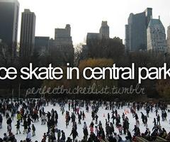 Before I die: Bucketlist, Centralpark, Buckets Lists, Central Parks, Beforeidie, Christmas, Before I Die, Ice Skating, New York