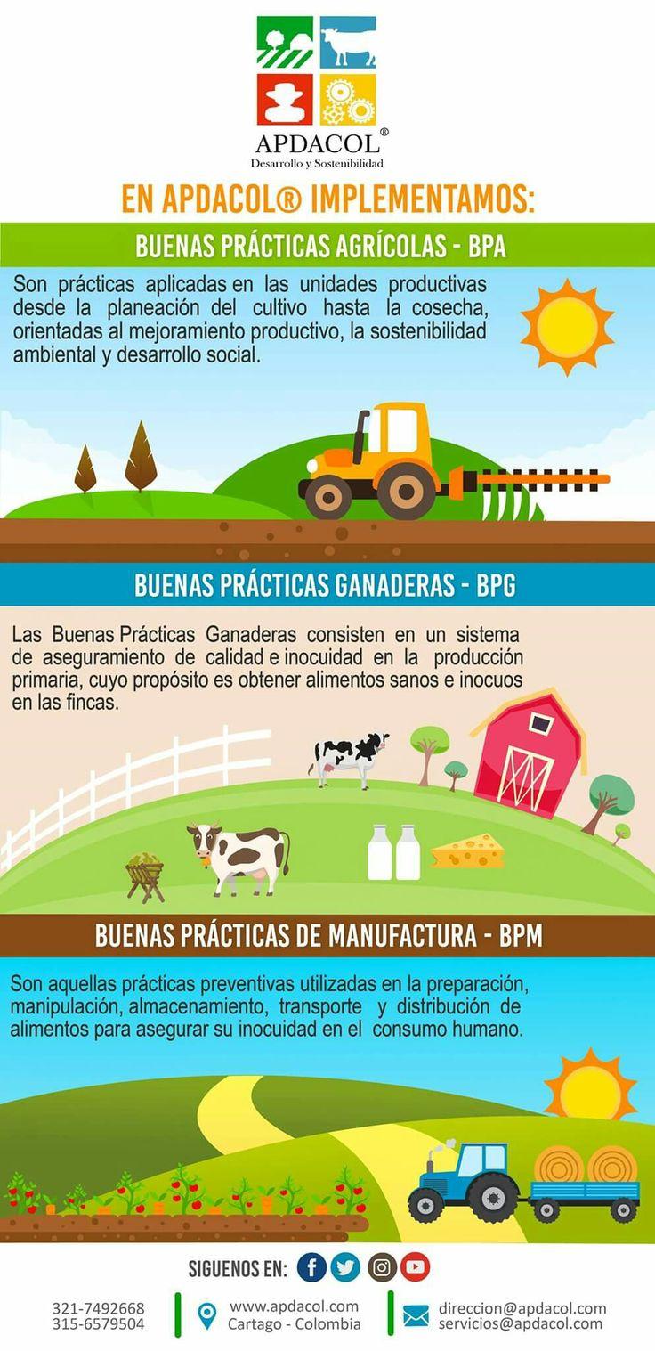 Requiere mejorar la productividad y la sostenibilidad de su sistema productivo?. En Apdacol somos líderes en la implementación de Buenas Prácticas Agrícolas, Ganaderas y de Manufactura. Hemos desarrollo una metodología efectiva para la organización y mejoramiento de sistemas productivos, fincas y empresas del agronegocio Colombiano. Comuníquese con nosotros. www.apdacol.com #Apdacol.