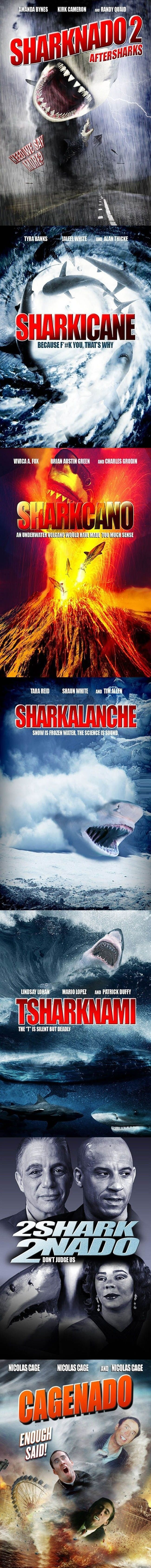 After Sharknado 1  - funny pictures #funnypictures