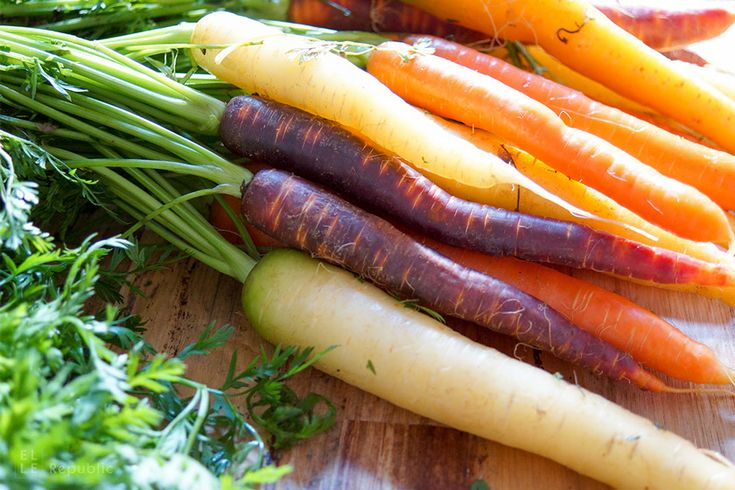 Alte Sorten Karotten / Möhren alte Sorten