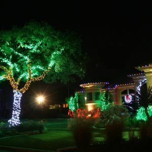Outdoor Tree Light Decoration Ideas