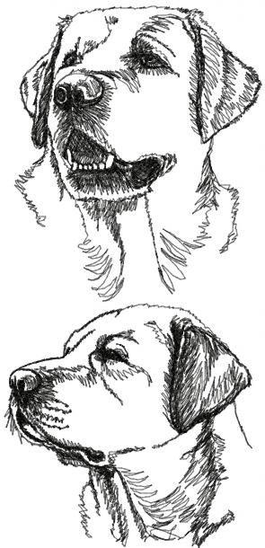 labrador retriever set continuous line drawings