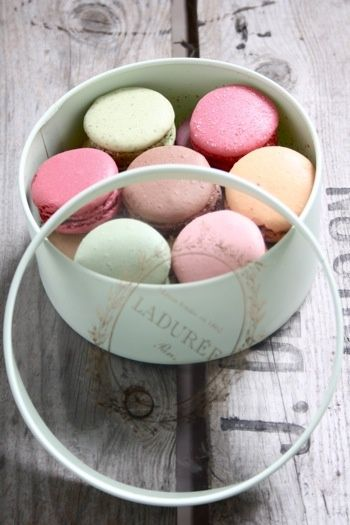 Laduree Macarons. I can't believe I've never had a Macaron. Francophileme. Better make sure the 1st one I have is from France.