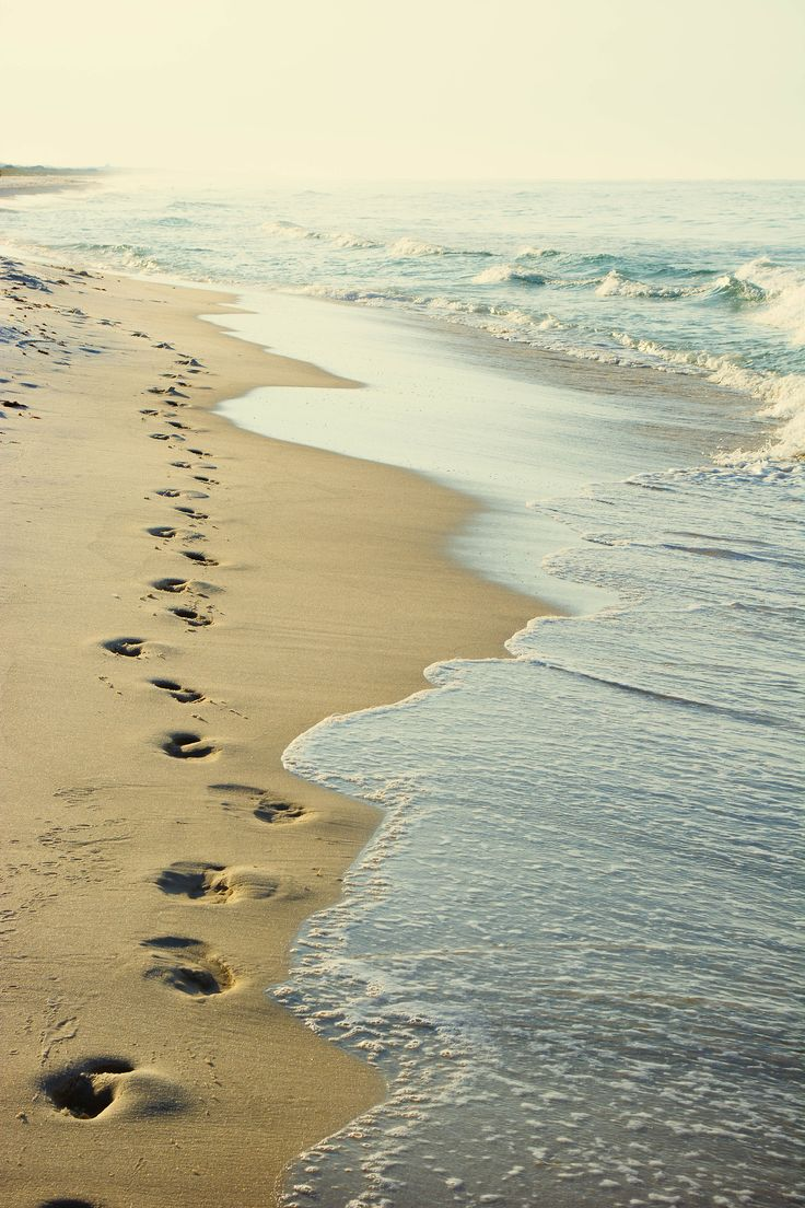 19 best Footprints images on Pinterest | Footprints, Flower ...
