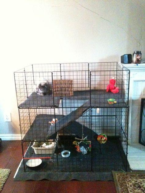 best 25  rabbit cages ideas on pinterest