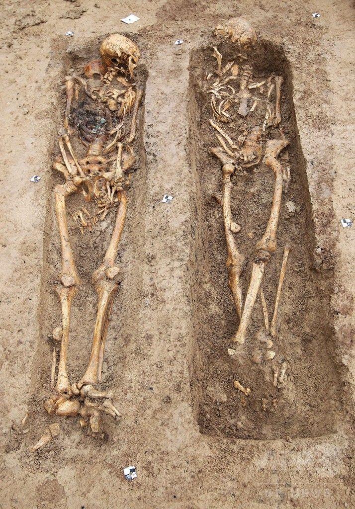 独フランクフルト Frankfurt の建設現場で発見された、ナポレオン Napoleon 「大陸軍 Grande Armée 」兵士の遺骨(2015年9月17日撮影)。(c)AFP/DANIEL ROLAND ▼18Sep2015AFP ナポレオン遠征軍兵士200人の遺骨発見、ドイツ http://www.afpbb.com/articles/-/3060690