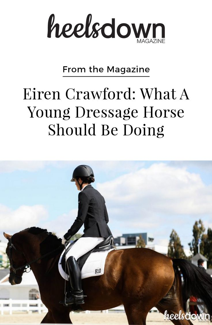 What should a young dressage prospect be working on in his three-, four-, and five-year-old years to springboard a long, successful career? Canadian grand prix dressage rider and head trainer of All Points Dressage in Maryland, Eiren Crawford, explains how young horses should progress through these formative years. [Read more...]