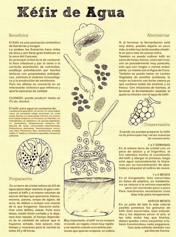 El kéfir de agua es una bebida muy saludable que se puede obtener de la fermentación de varios ingredientes y su gusto es muy similar al de una limonada pero con gas. Esta bebida ayuda en la mayoría de las enfermedades ya que tiene un efecto digestivo, diurético y muy depurativo a nivel intestinal, es muy buena cuando no se tiene apetito o se está convaleciente de alguna enfermedad. Favorece la eliminación de gases intestinales y a las digestiones lentas ya que elimina las putrefacciones…
