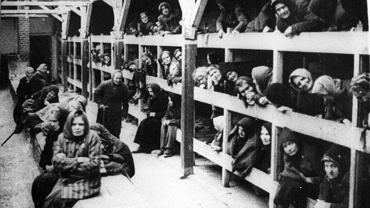 Gefangene im Konzentrationslager Auschwitz-Birkenau. Die Inhaftierten wurden meist wie Tiere behandelt