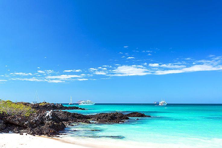 Galapagosöarna #galapagosöarna #galapagos #resa #semester