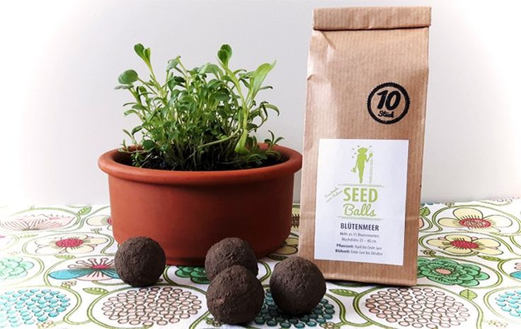 'Blütenmeer' Seedballs - 10er Packung Seedbombs