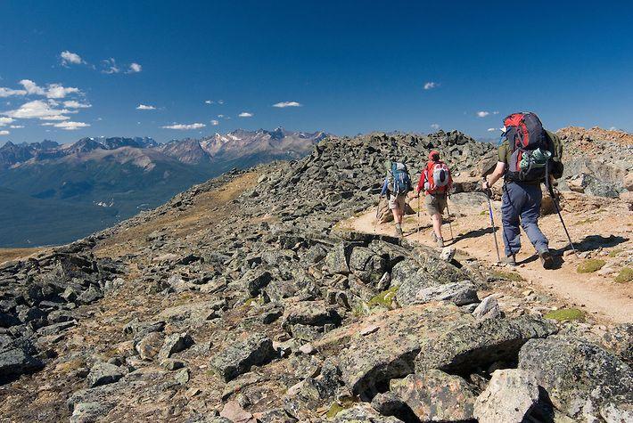 Skyline Trail - Jasper