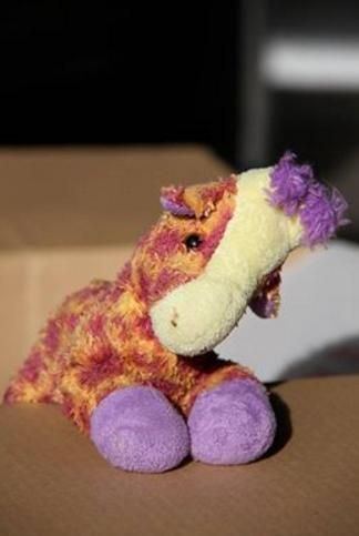 Lost on 05 Jun. 2016 @ Hohipere Street, Auckland, New Zealand. LOST: Our daughter's giraffe, with a purple mane and feet, somewhere between Pirate's Kitchen, 160 Symonds Street, and in the car parking building behind it on Hohipere Street on Sunday, 5 June at ... Visit: https://whiteboomerang.com/lostteddy/msg/hgx2gc (Posted by Kym on 07 Jun. 2016)