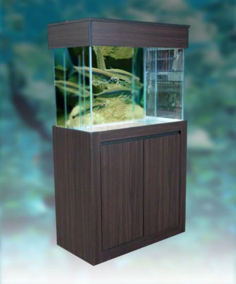 Malaysia Gombak Selangor Kuala Lumpur Aquarium Flat Type