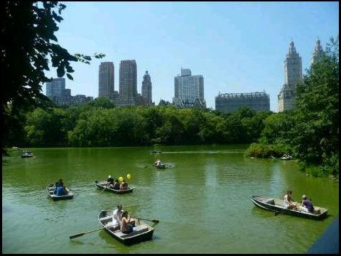 Foto de @Micheruiz - Central Park en Verano