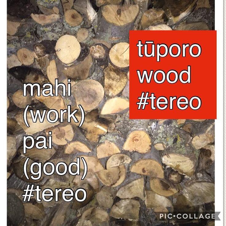 Mahi pai today with getting the tūporo stacked #tereo #māori #tereomāori