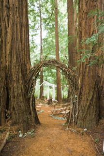 Romance in the Redwoods - A Forest Wedding | Photos - Style Me Pretty