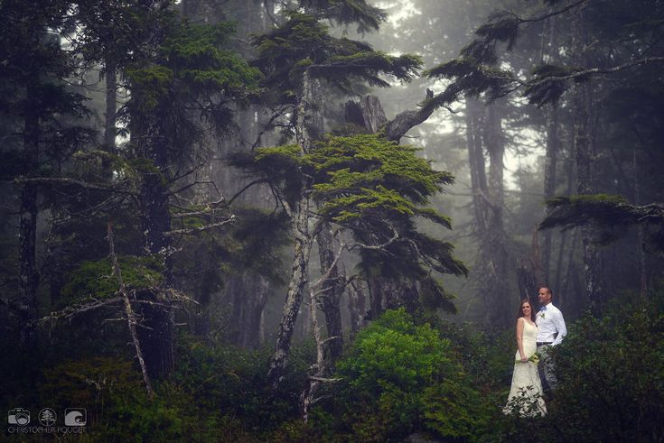 Chris Pouget_Forest Wedding ... Embrace the passion of the Wild Coast as your own http://romanceontheedge.ca