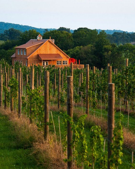 LOUDOUN COUNTY, VIRGINIA = THE NEW NAPA VALLEY