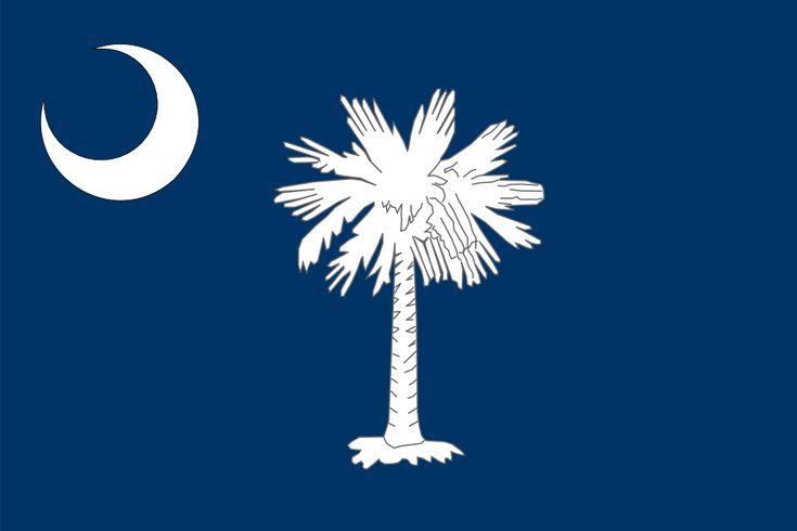 Flag of South Carolina free clip art