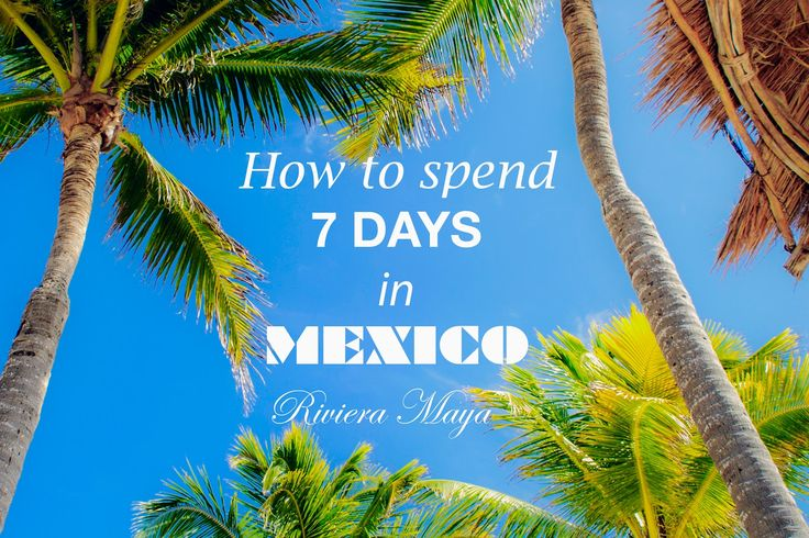 The World by The Brunette: 7 Days in Riviera Maya, Mexico (Grand Bahia Principe Tulum Resort)