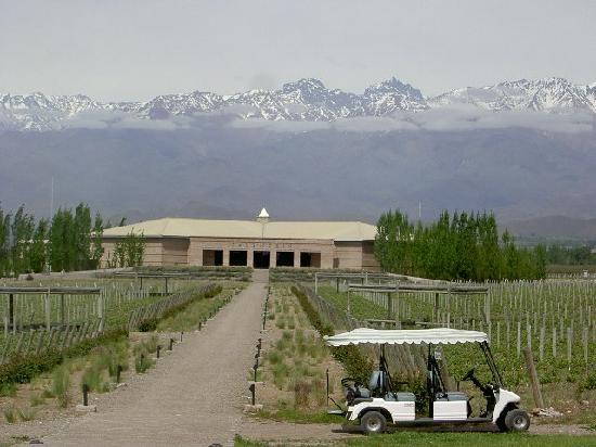Winery in Mendoza