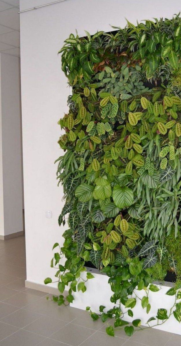 24++ Vertikaler garten aussen pflanzen Sammlung