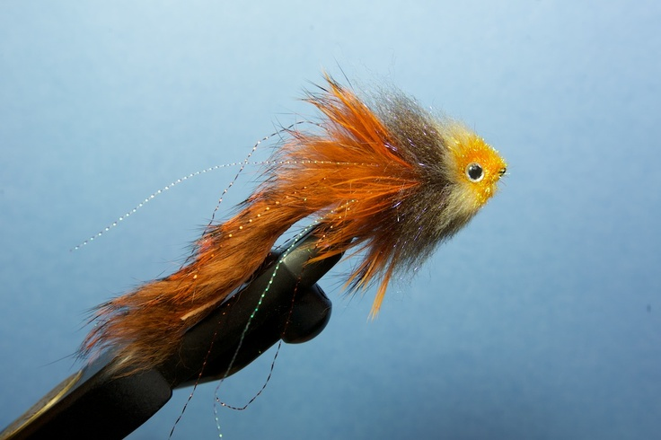 Steelhead alley fly tying robinson 39 s munchable minnow for Fish steelhead alley