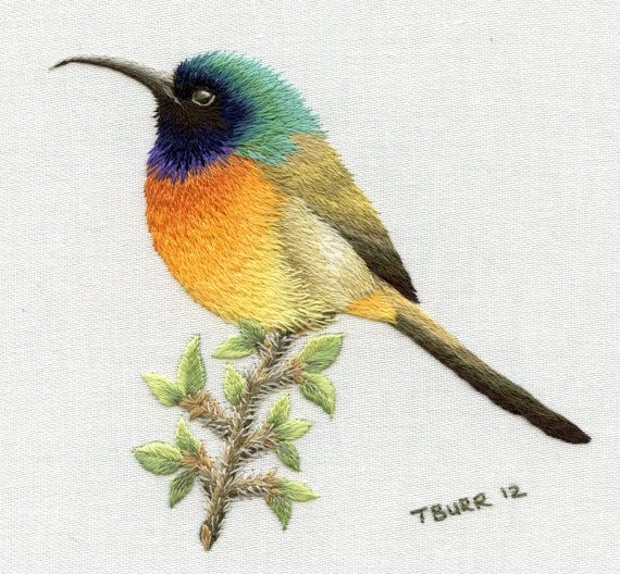 ORANGE BREASTED SUNBIRD by TRISHBURREMBROIDERY on Etsy