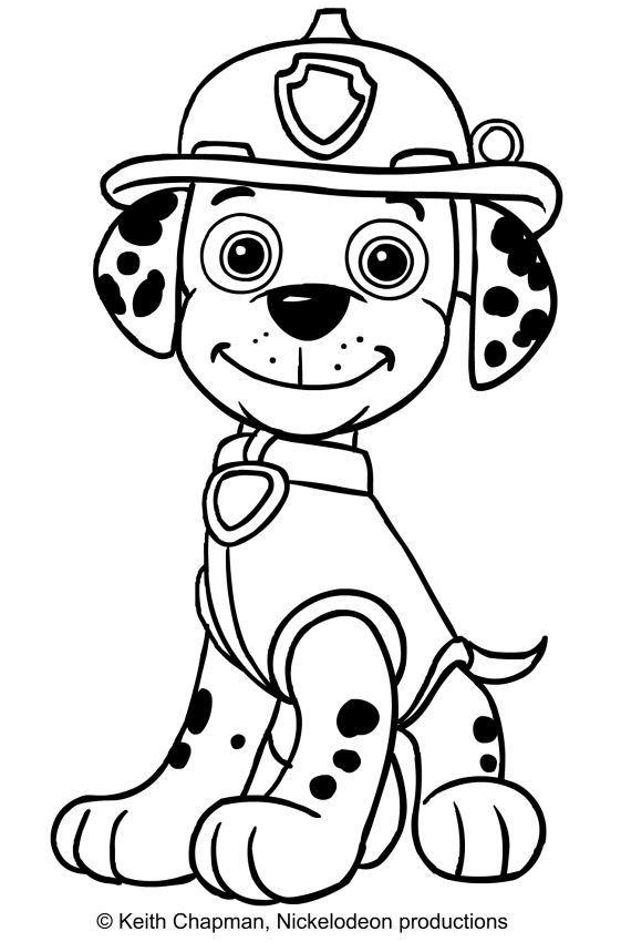paw patrol marshall coloring page  google search  paw