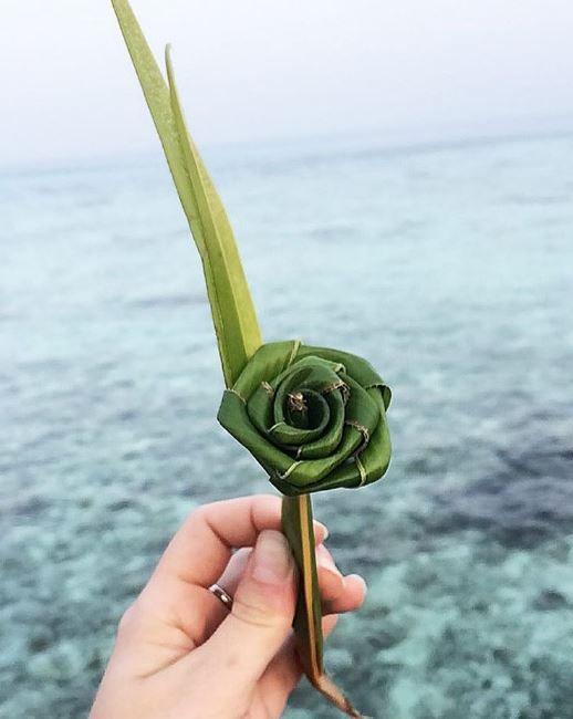 Moofushi flower of palm