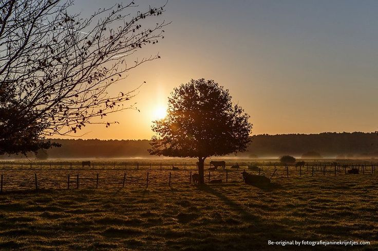 A beautiful morning.. #canon #fineart #landscape #photography #beoriginal