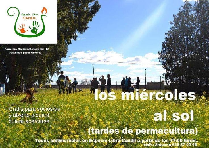 Los Miercoles al sol (tardes de permacultura) INFO: ESPACIO LIBRE CANDIL www.espaciolibrecandil.org Carretera de Cáceres km 8