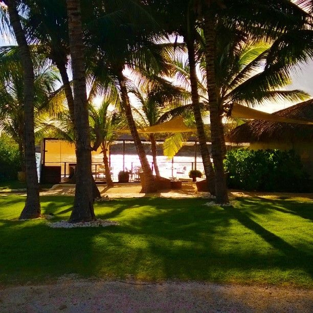 #EdenRoc #PuntaCana #travel #palmtrees #beach #shotonmylumia #lumiaswitch