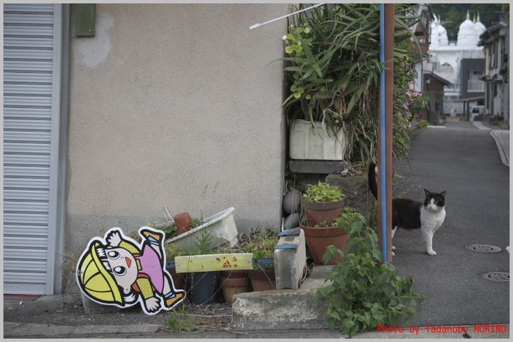 温泉街朝散歩1 : CAFE IL MORINO by Tadanobv MORINO