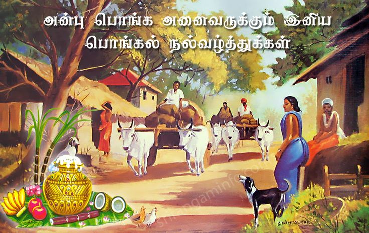 pongal greetings village landscape cow