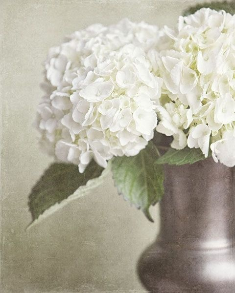 77 Best Bedroom Color Ideas Greens Images On Pinterest