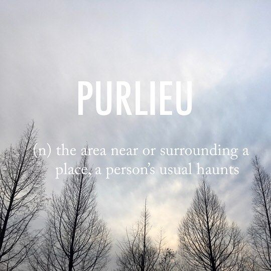 Purlieu |ˈpəːljuː| Late 15th Cent. (denoting A Tract On The Border Of