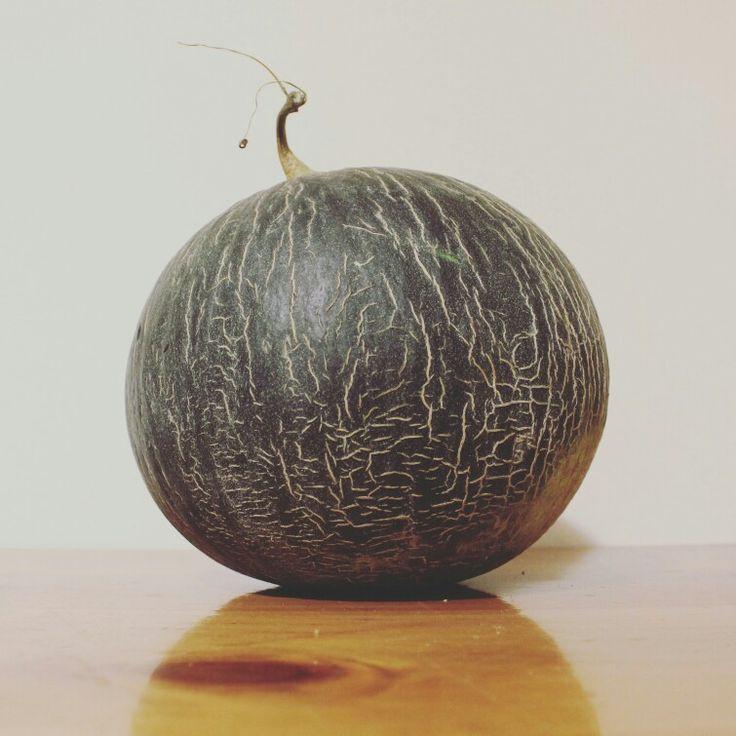 Melon -- photo by Evi Tselempi