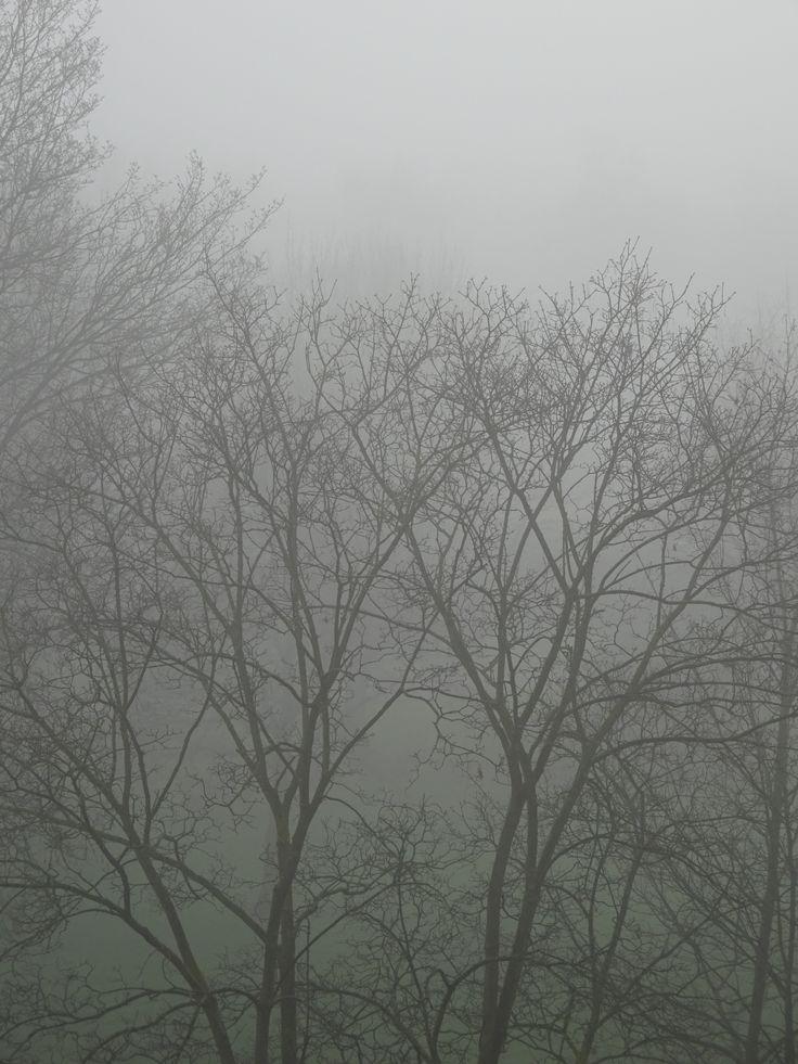 Fog - New Years Day 2016 - Utrecht
