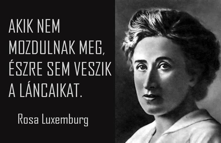 Rosa Luxemburg idézete a szabadság illúziójáról. A kép forrása: Anonymous Operation Hungary # Facebook