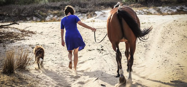 Eventers are the best | Life With Horses