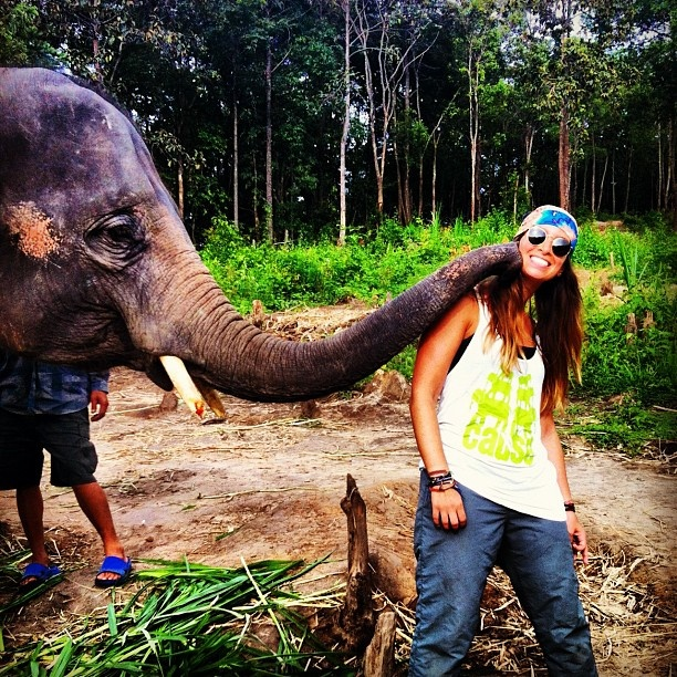 #rockyourcause elephant tee chilling with elephants in thailand