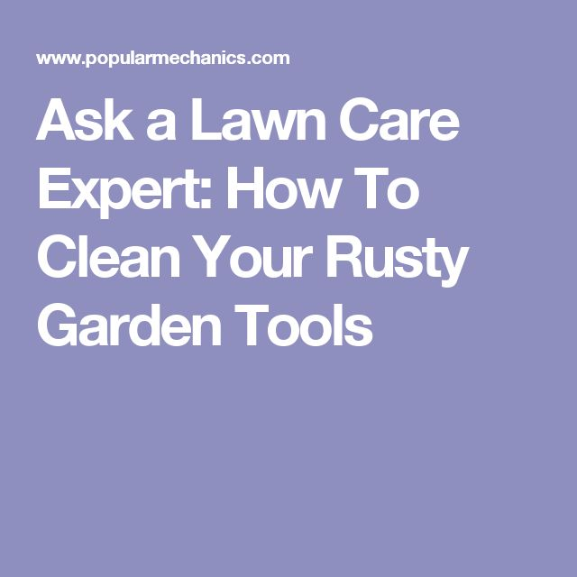 Ask a Lawn Care Expert: How To Clean Your Rusty Garden Tools