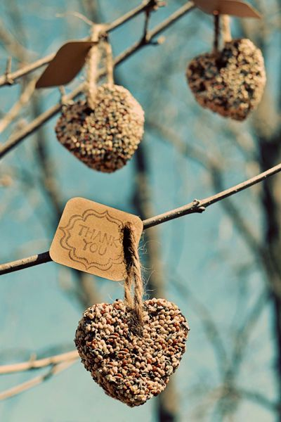 DIY birdseed heart favors - what a great and eco-friendly idea!