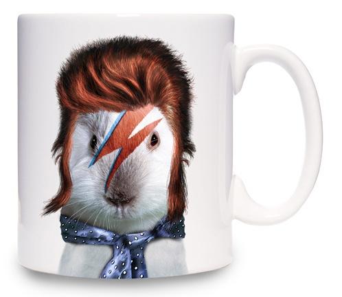 !!Rocks Hamsters, Pets Rocks, Rocks Glam, Cushions Aqua, Glam Rocks, David Bowie, Aqua Glam, Hamsters Cushions, Face Stars
